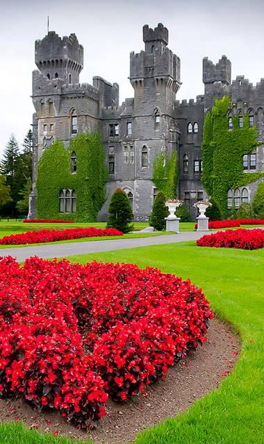 15-daagse autorondreis All of Ireland (Hotels)